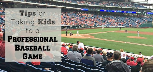 Are you planning on a trip to the baseball field this summer? Here are some great tips when you take your kids to a professional baseball game.