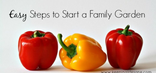 Easy Steps to Start a Family Garden