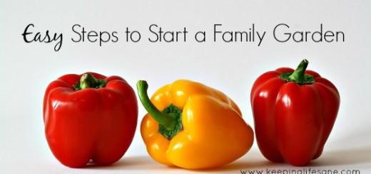 Easy Steps to Start a Family Garden