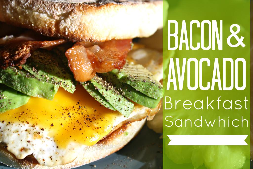 Bacon-and-Avocado-Sandwich