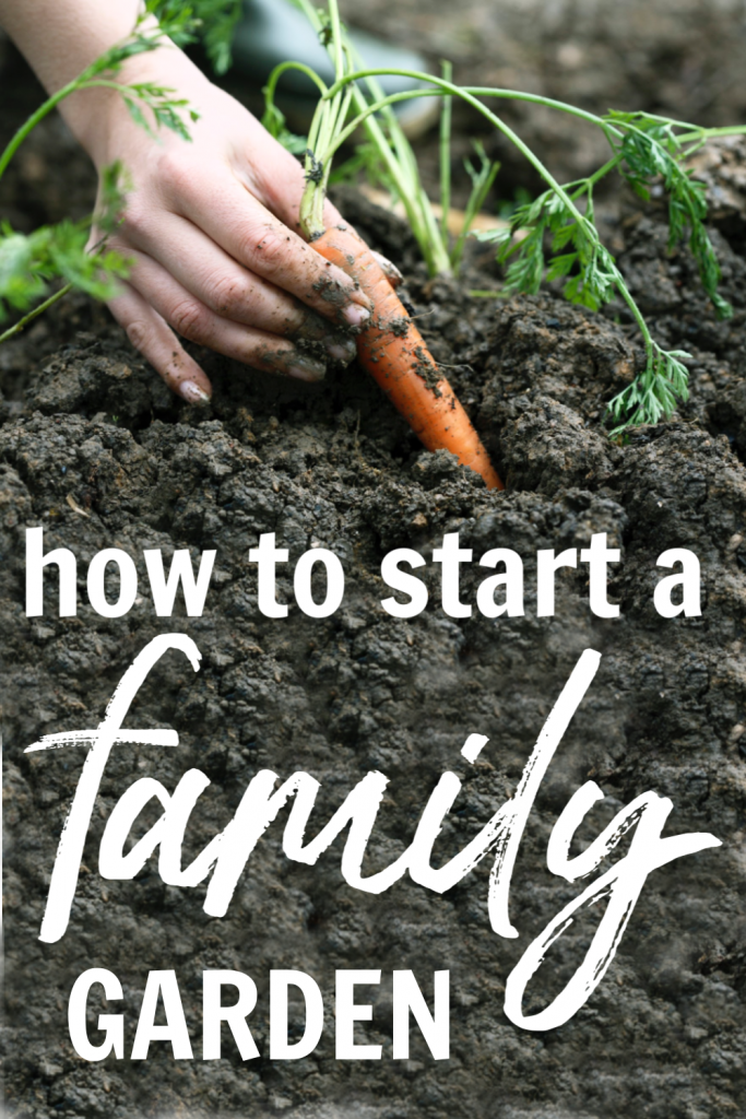 So...you're interested in a garden? Read about what you need to start a family garden this spring!