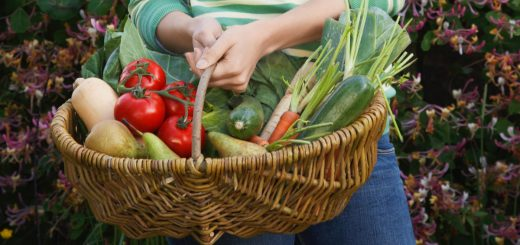 What is a CSA and should you buy your veggies this way? Learn all about this new way to get your fruits and vegetables.