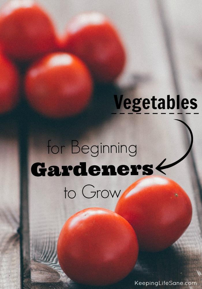 Vegetables for Beginning Gardeners to Grow