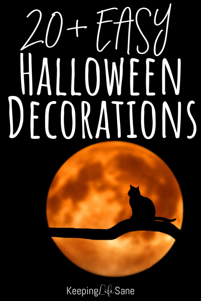 Halloween is coming and it's such a fun holiday. It's time to start decorating. Take a look at these easy halloween decorations.