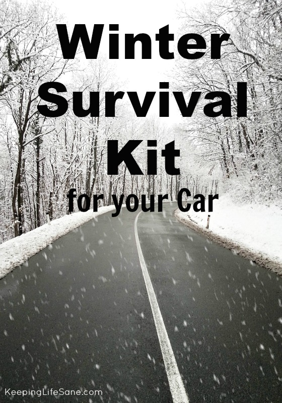 Winter Survival Kit for your Car