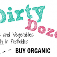 Dirty Dozen