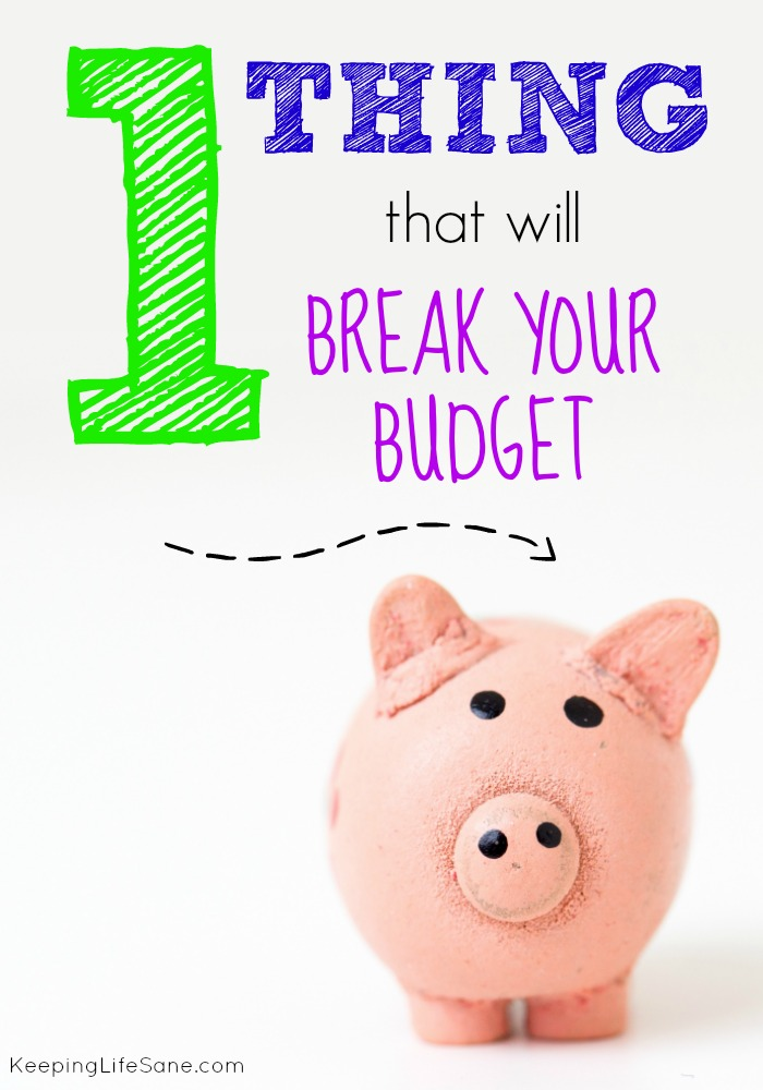 One Thing That Will Break Your Budget