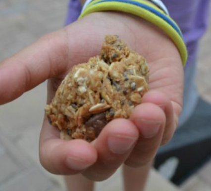 kid hand holding protein ball