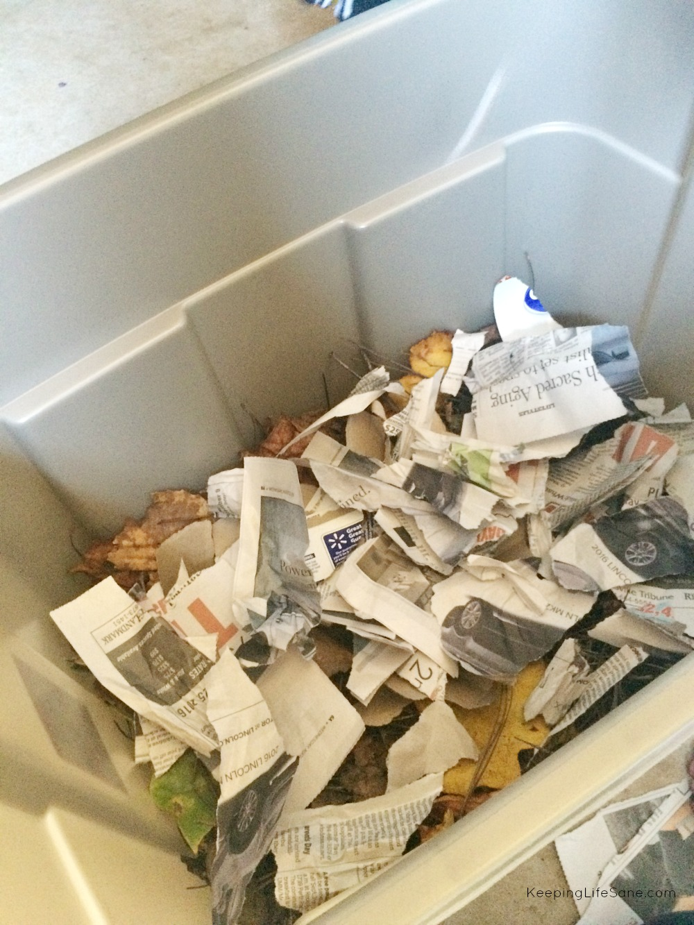 Closeup of inside of Rubbermaid bin that has dried leaves and torn up pieces of newspaper inside.