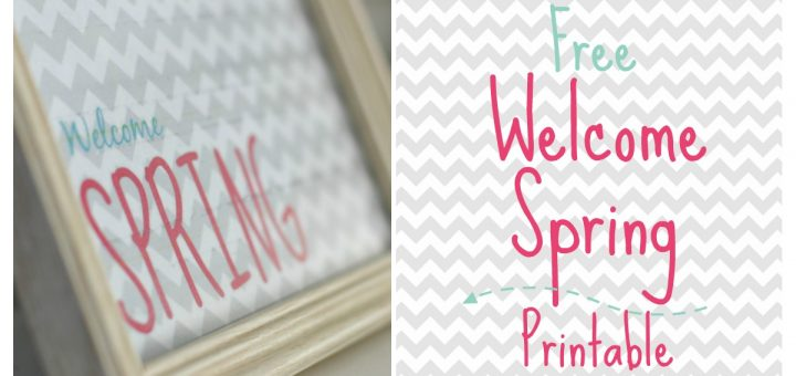 Spring is right around the corner. Here's a great Welcome Spring free printable that you can print at home to decorate your mantel or coffee table.