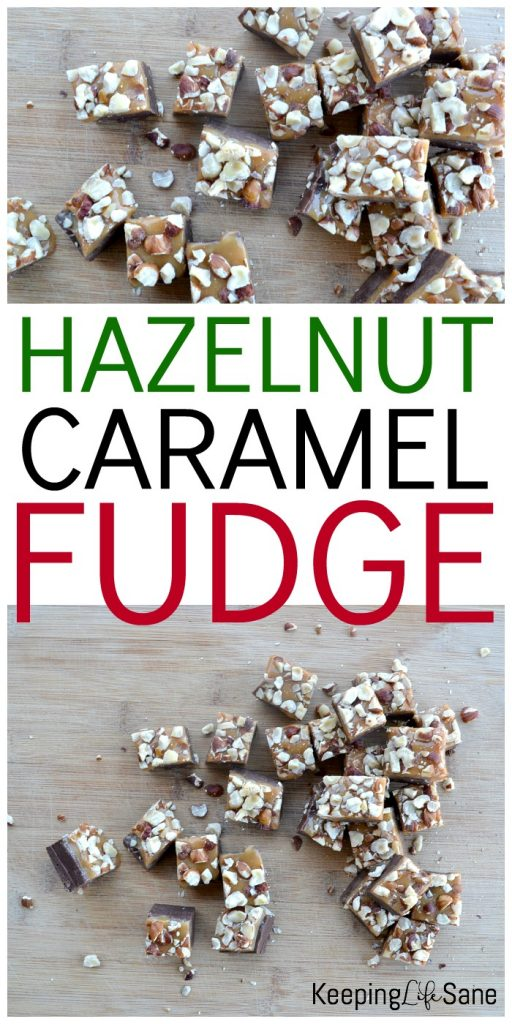 This is the most perfect gooey chocolate caramel fudge for anytime of the year. The hazelnuts top off this delicious treat.