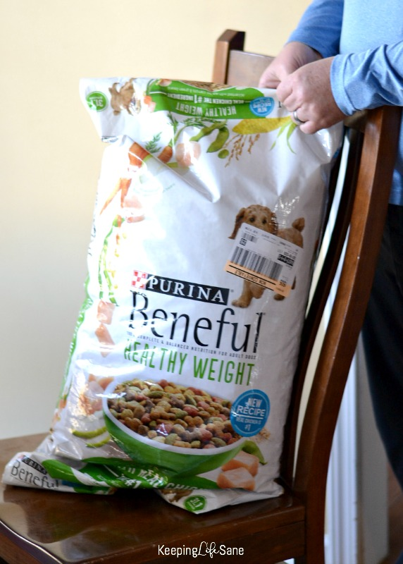 dog food bag sitting on chair when man opening it up
