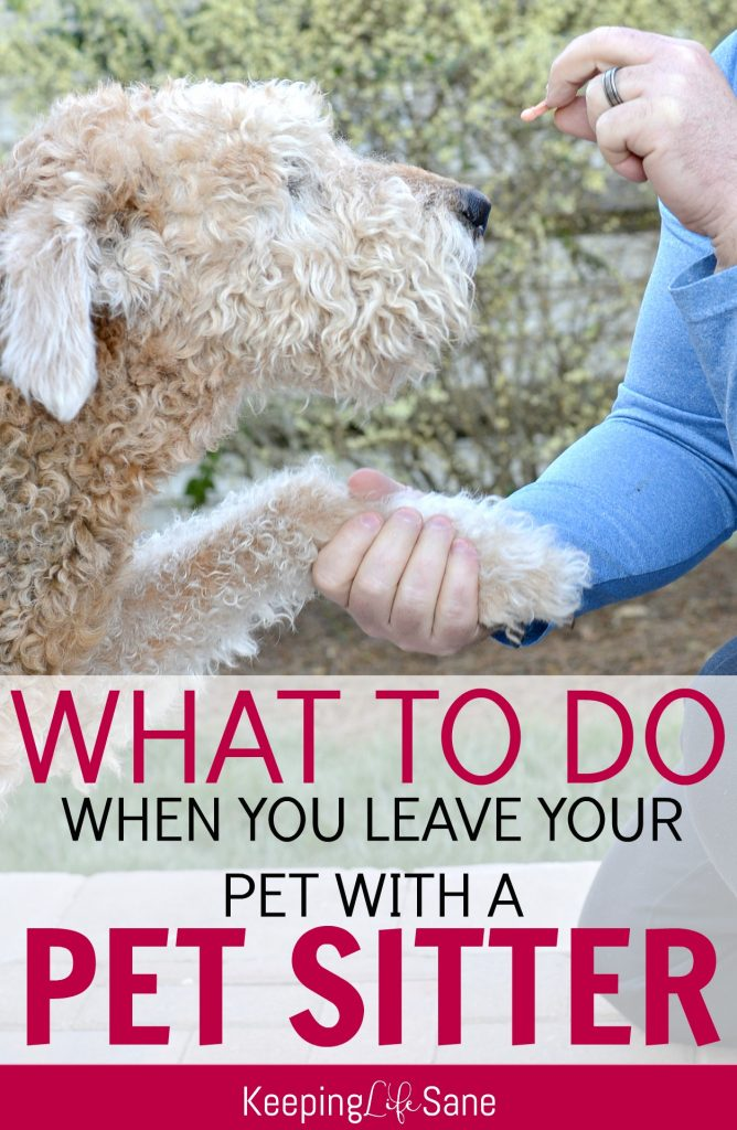 pet sitter checklist with free printable
