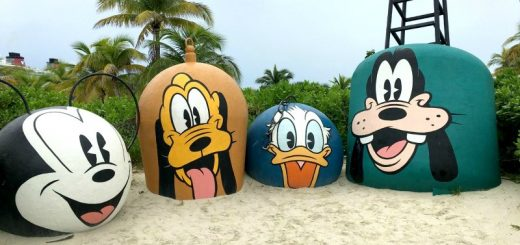 Going on a Disney vacation is a dream for most families. Here are some great tips for planning your Disney vacation (from an expert!)
