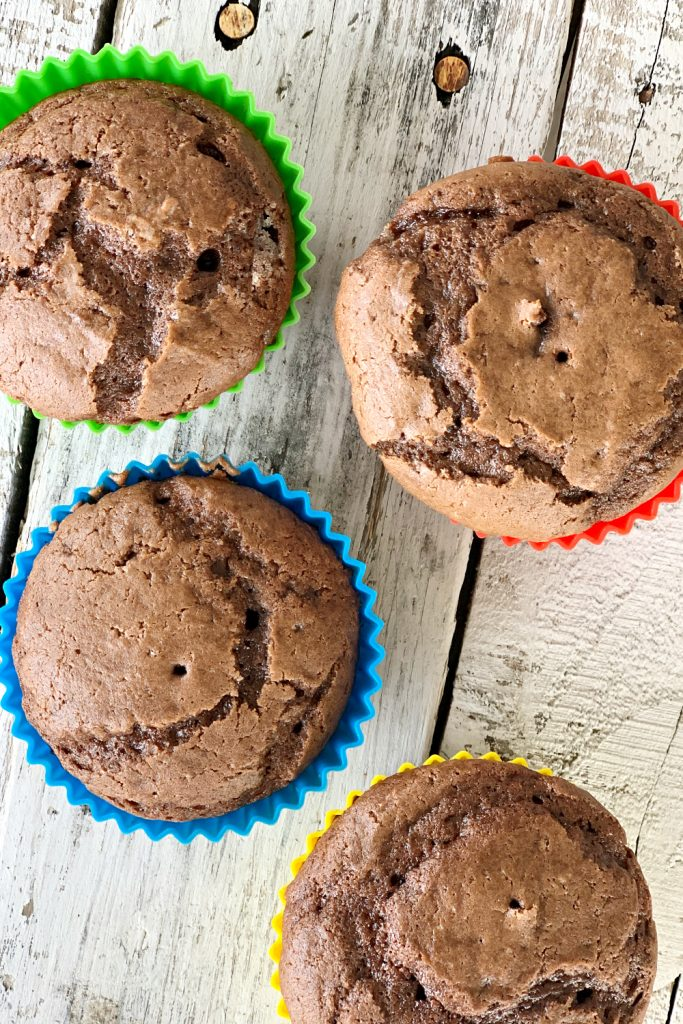 chocolate cupcakes from overhead